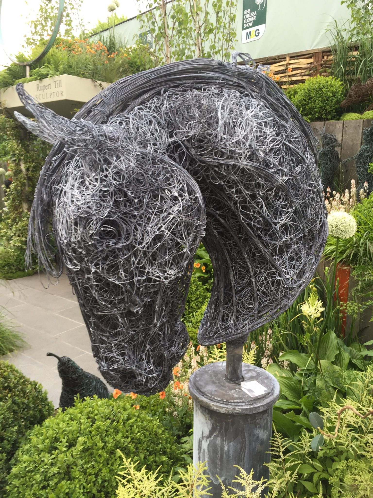 Wire Horse Head Sculpture Chelsea Flower Show