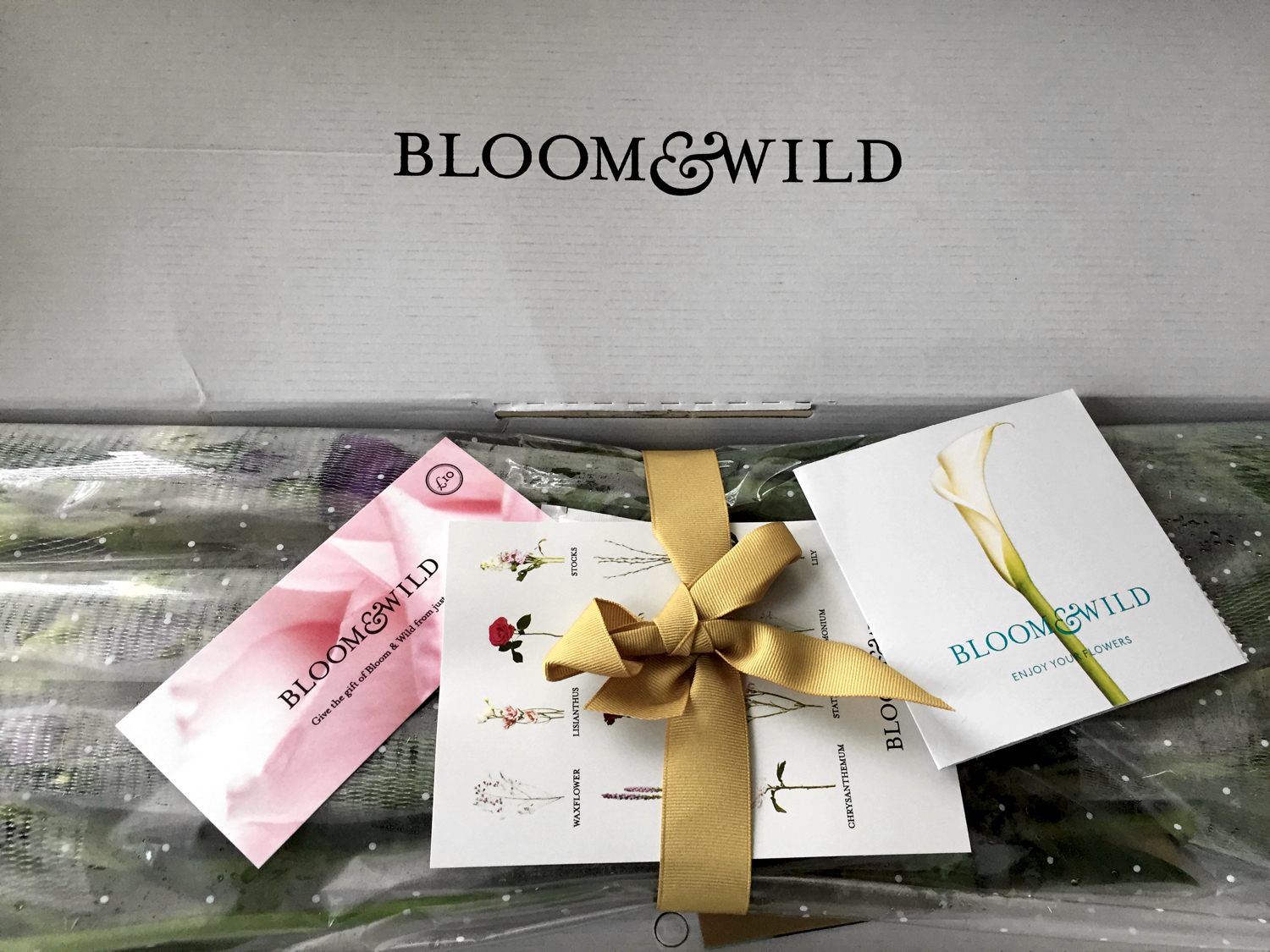 Bloom and Wild Flowers in box 3